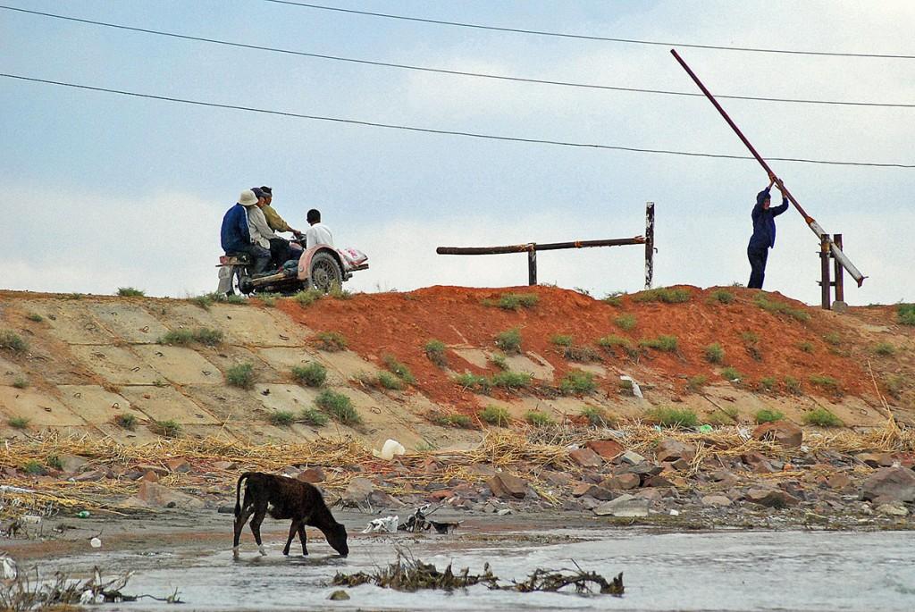 Szlabany w Kazachstanie oddzielają wszystko: miasto od opłotków, drogę od bezdroża, krowę od wielbłąda :)