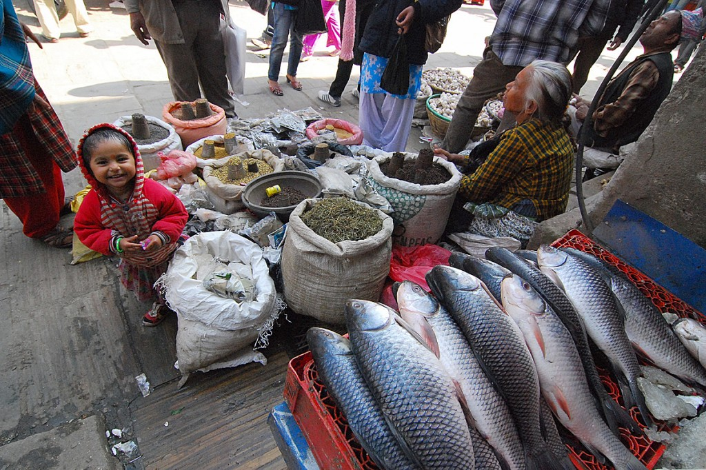 Rybny w Katmandu